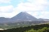Ttokaanurotorua208